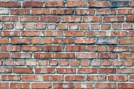treated board: Old Brick Wall