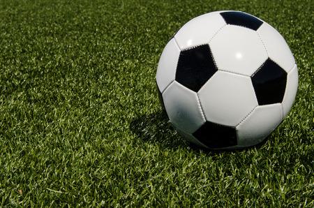grass: Soccer ball on grass