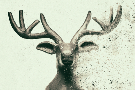 Antique deer head with dispersion effect