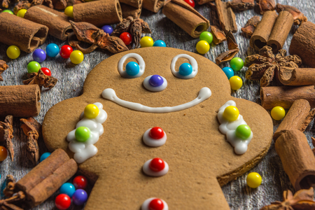 Single ginger bread cookie Standard-Bild