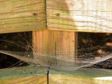 Web in a corner Reklamní fotografie