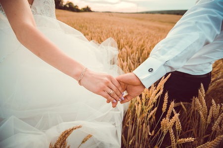 a young couple holding hands.Two people united in nature, field, wheat Stock Photo