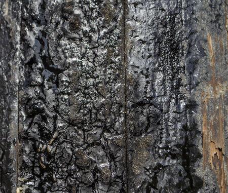 tar: tar on electricity pole Stock Photo