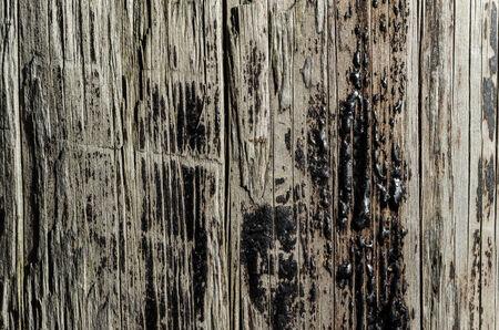 tar: Tar on Wood