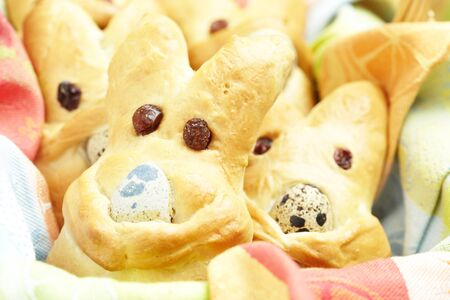 Easter bunny buns photo