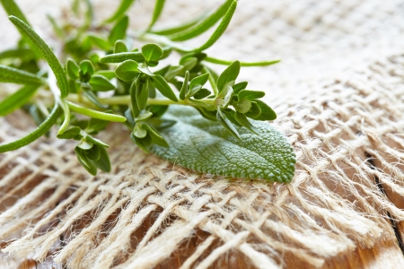 herbs of provence: Fresh herbs