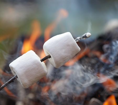 キャンプの火で焼きスティック上にマシュマロ 写真素材