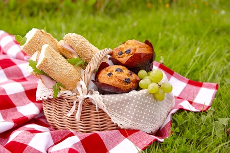 Picnic basket with sandwiches, muffins and fruits