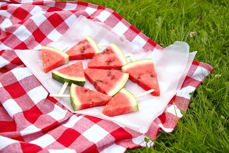 picnic food: Watermelon pops for a picnic on green grass