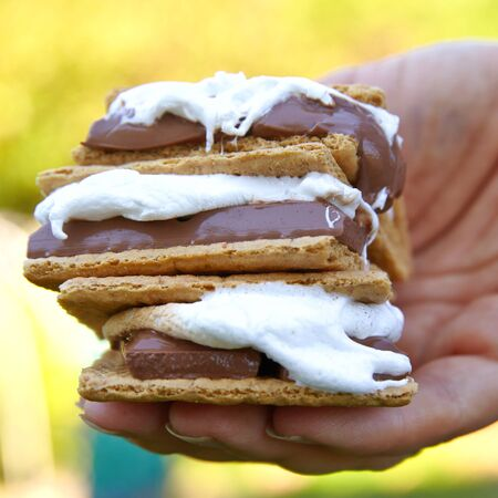 chocolate treats: Homemade Smores with Marshmallows, Chocolate and Graham Crackers