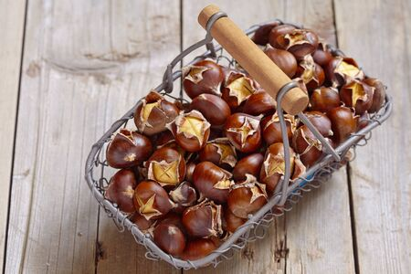 opened bag: Delicious roasted chestnuts in a wire basket