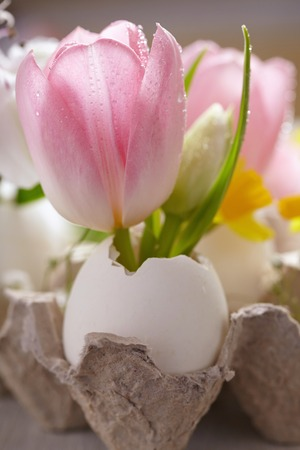 easter flowers: Easter decoration with flowers Stock Photo