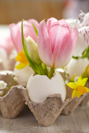 Easter decoration with flowers 스톡 콘텐츠