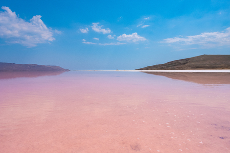 Pink salt Lake Koyashskoe, Crimea.
