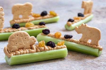 Ants on a Log Snack with Celery Peanut Butter, Raisins and Cookie Imagens
