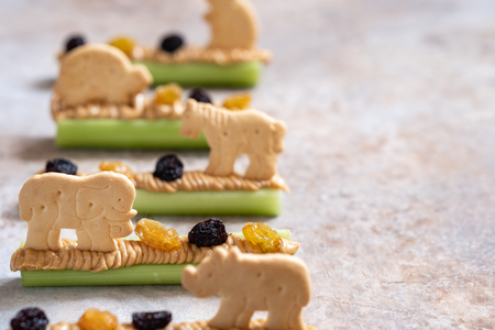 Ants on a Log Snack with Celery Peanut Butter, Raisins and Cookie Reklamní fotografie