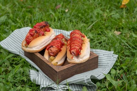 Grilled hot dogs with mustard, ketchup and relish on a wooden tray