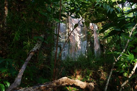 Very old destroyed house is located in jungle at peninsula Santubong coast. Borneo. photo