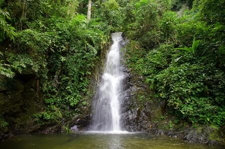 Waterfalls in mountains in tropical wood. Langkawi Stock Photo