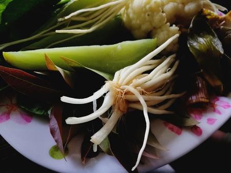 Thailand herb Stock Photo