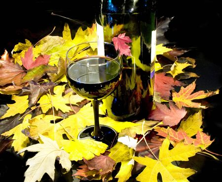 Glass and bottle of red vine at the rug of yellow leafs