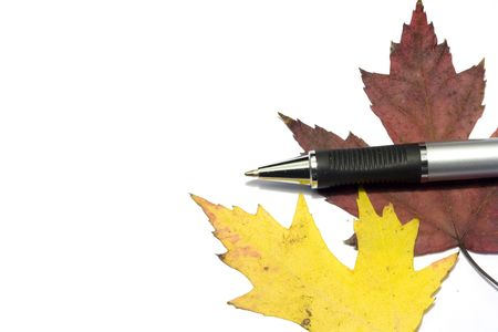 pen with fall golden leafs Stock Photo