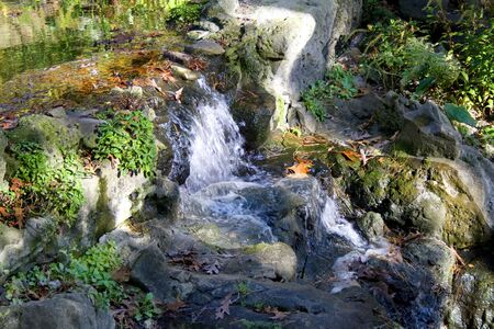 Cascade Reklamní fotografie
