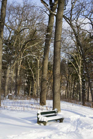 Green bench with snow in winter at the park