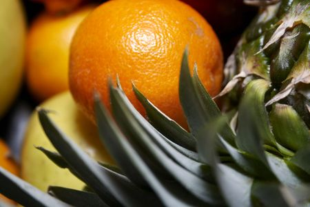 Close-up of exotic fruits through pinapple leafs Reklamní fotografie