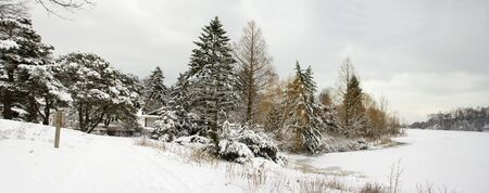 Winter lakeshore view with naked snow-covered trees Stock Photo - 2487481