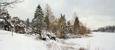 Winter lakeshore view with naked snow-covered trees