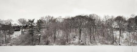 high park: Pizzo alberi in inverno lago ghiacciato nel Parco Alto di Toronto