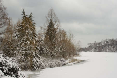 Winter lakeshore view with naked snow-covered trees Stock Photo - 2487463