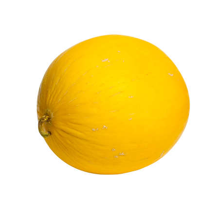 yellow canary melon on white background isolated without shadow