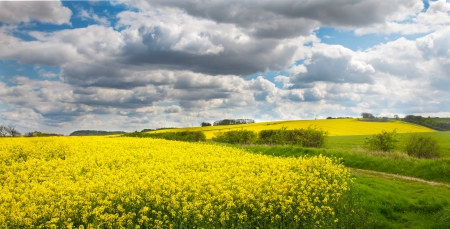Lincolnshire wolds with oil showing seed rape Stock Photo
