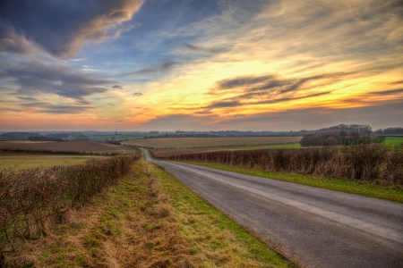 hedgerow: An evening sunset in the lincolnshire wolds