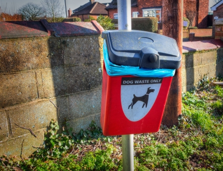 lampost: A red dog poo bin on a lampost