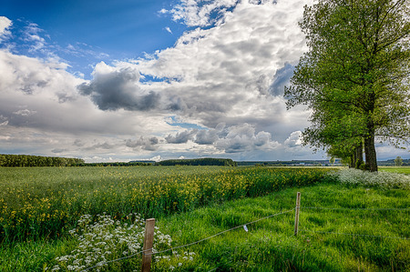 hedgerow: Linvolnshire Wolds with clouds after storm Stock Photo
