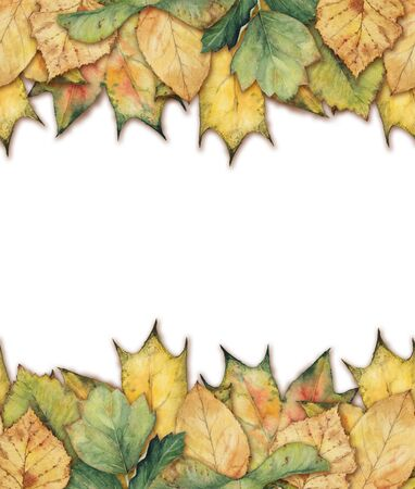 seamless background: seamless background with leaves
