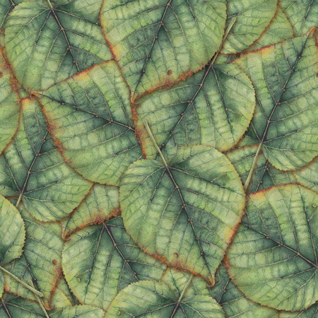 seamless: seamless background with leaves