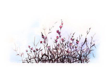 flores secas: Dried flowers. Original watercolor painting.