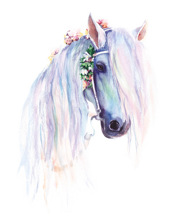 たてがみの花と青い馬。オリジナル水彩画 写真素材