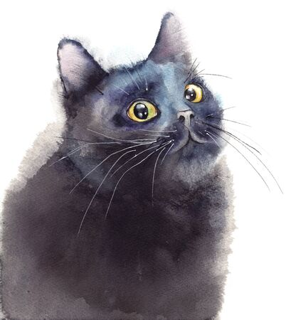 Fluffy black cat isolated on white. Original watercolor illustration. Banco de Imagens