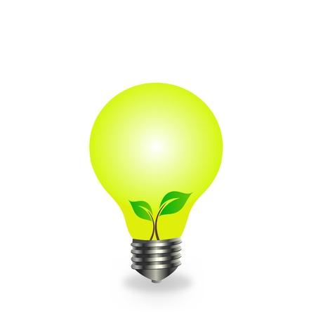 Seedling in bulb