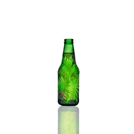 beck: green bottle