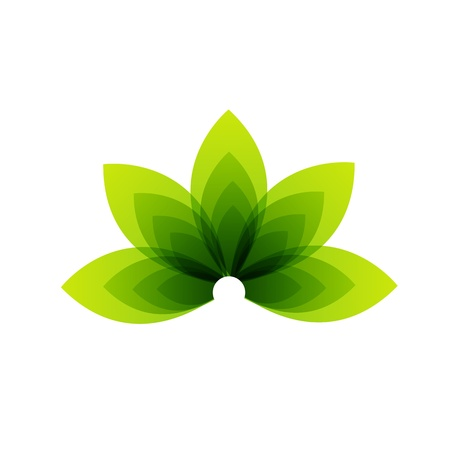 Organic Product Illustration