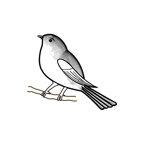 aviary: Hand drawn bird on a twig Illustration
