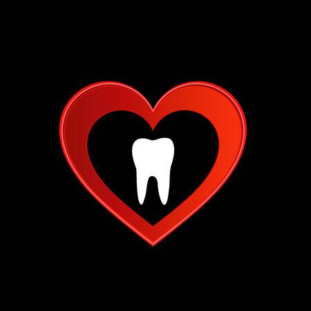 premolar: Tooth