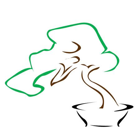 bonsai: bonsai Illustration