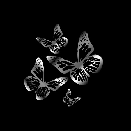 aerials: Silver colored butterflies flying on black Illustration